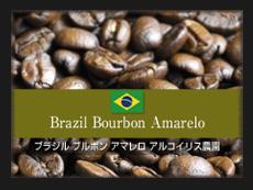 ブラジル ブルボン アマレロ アルコイリス農園