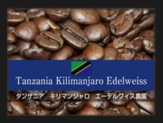 タンザニア キリマンジャロ エーデルワイス農園